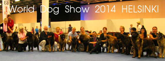 World Dog Show 2014 Helsinki